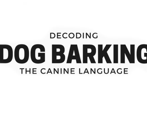Decoding Dog Barking: The Canine Language